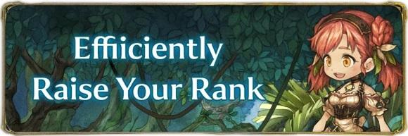 Efficiently Raise Rank