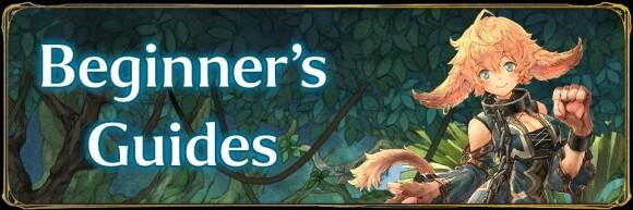 Beginner's Guides